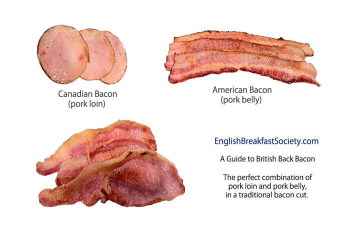 [Image: BaconGuide.jpg]